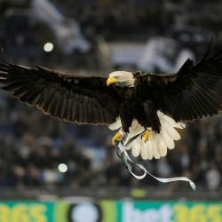 avatar Eagle1900