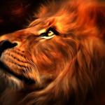 avatar LoLion