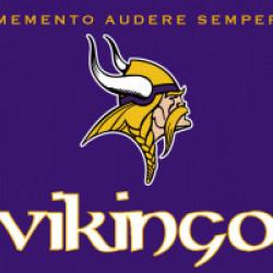 avatar vikingo