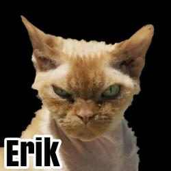 avatar Erik